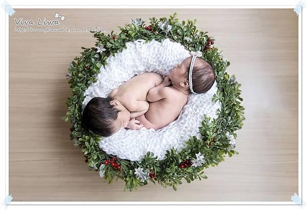 newborn pics b13.jpg