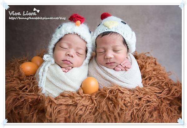 newborn pics b21.jpg