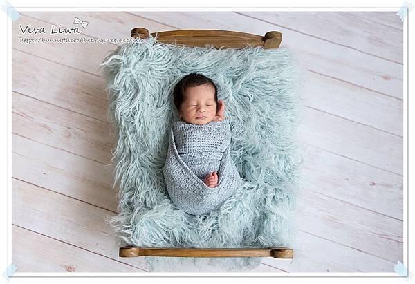 newborn pics b26.jpg