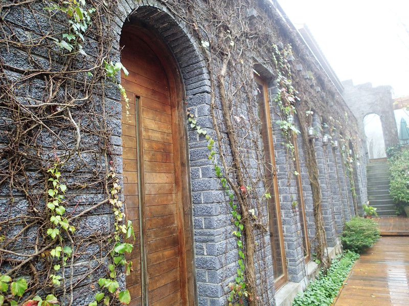 好喜歡這面古堡的牆喔!