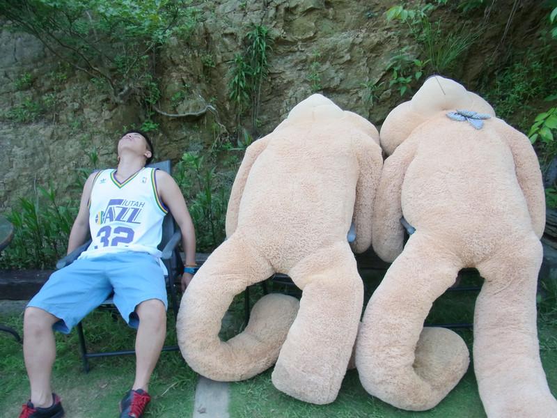 發現一胖的超大熊.阿呆就叫我這樣拍..好有梗喔!好好笑