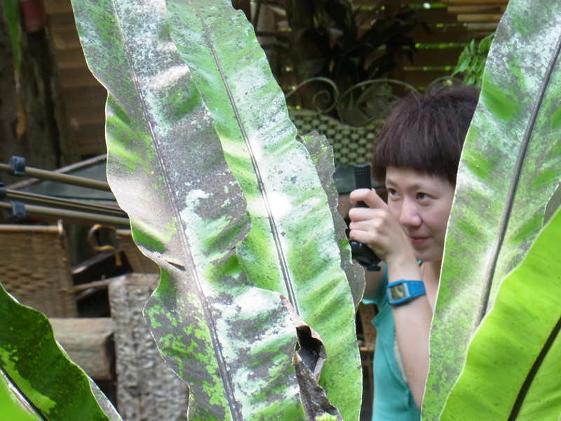 讓我很像來拍一張叢林獵殺的照片.哈哈