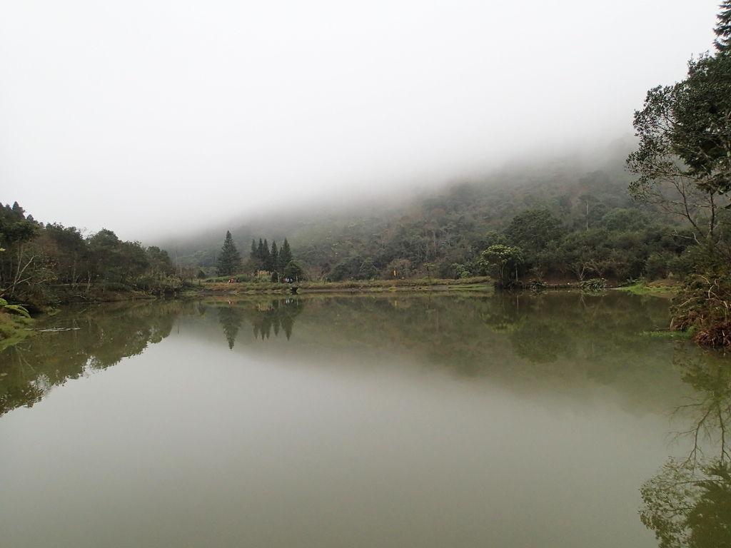不管從哪種角度拍湖面都好美喔!