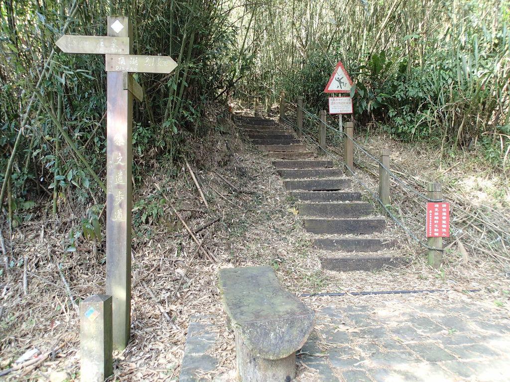接著就會接到下個茶之道步道的步道口囉~