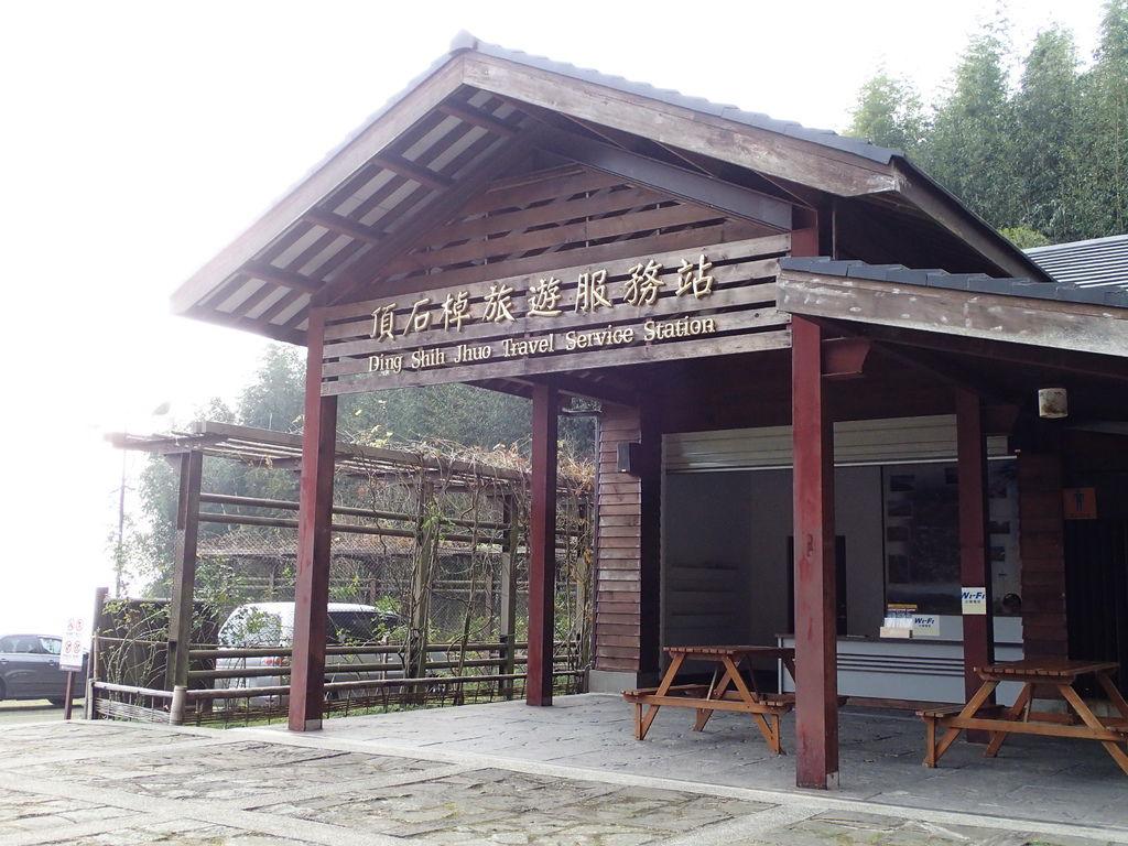 頂石棹遊客中心旁就是櫻之道130m
