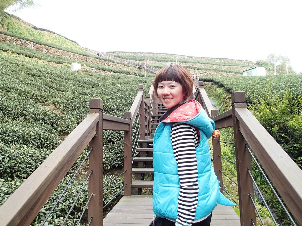 茶園步道拍好美喔!