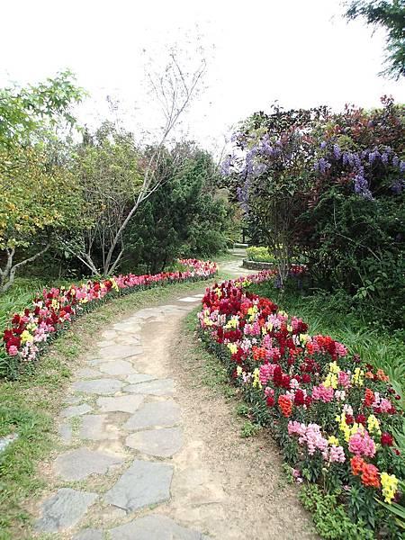 走進森林花園.如迷宮般..相當有趣