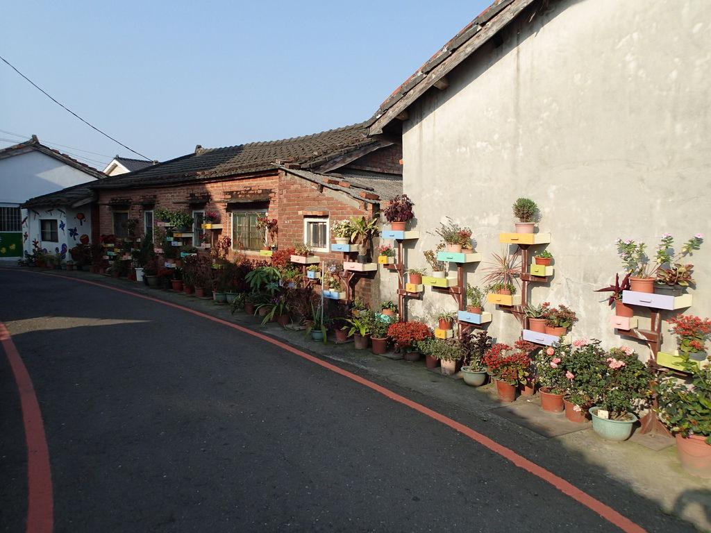 這面圍牆的園藝造景漂亮