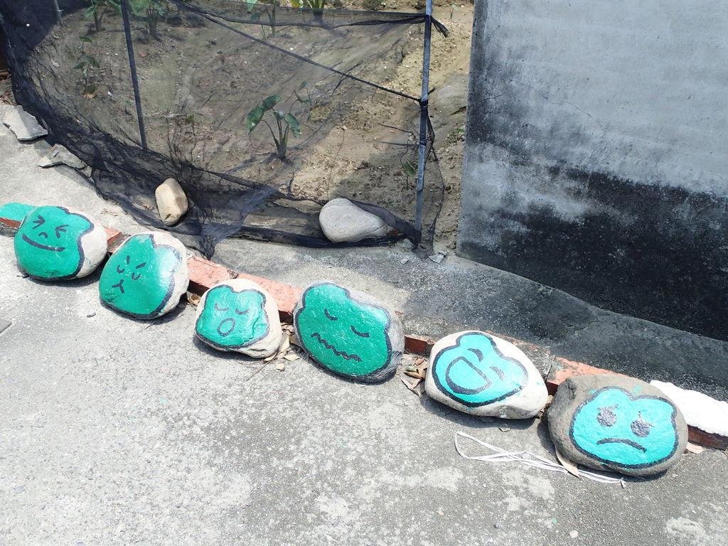 石頭上的青蛙表情