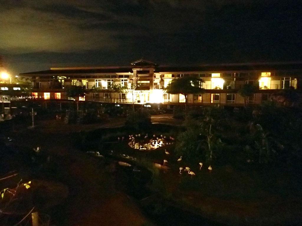 夜晚的六福莊動物區