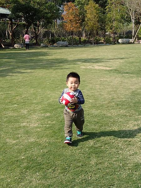 草皮.球.孩子的快樂天堂