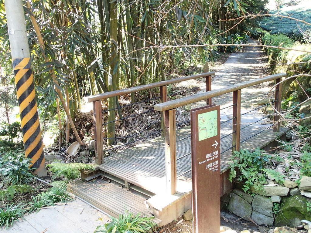 福山古道和迷糊步道是能相接的.