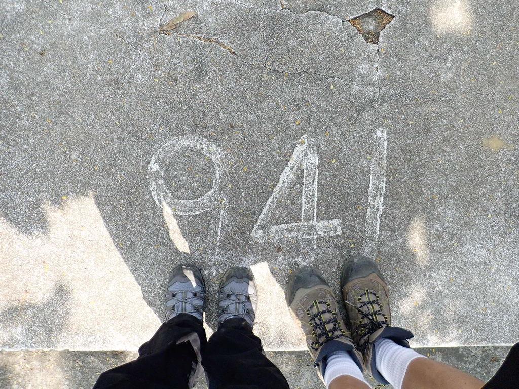PA210289.JPG