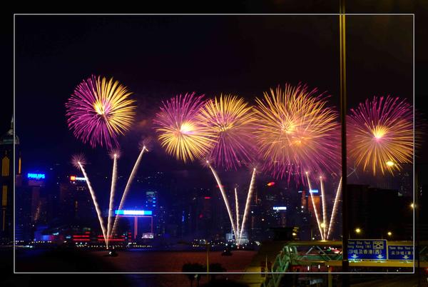 048 香港國花.jpg