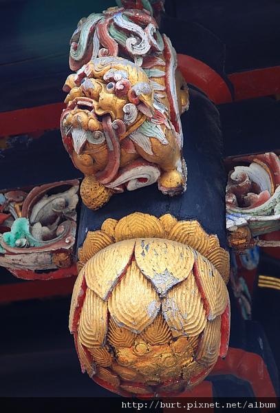 木獅子及垂花2.jpg