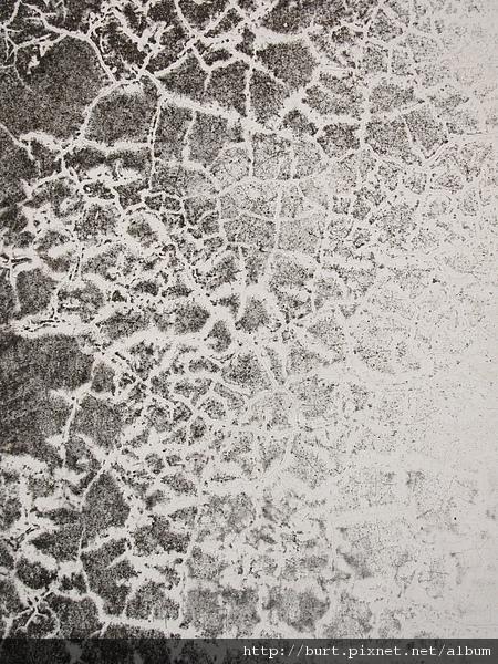 斑駁的白粉牆.jpg
