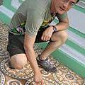 檳城_娘惹博物館的地磚.jpg