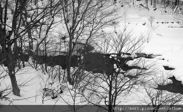 定山溪溪流雪景006.jpg