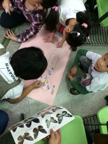 2014年10月11日四分尾山社區斑蝶、生態觀察與解說深根計畫