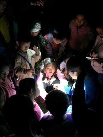 2014年10月18日四分尾山社區斑蝶、生態觀察與解說深根計畫