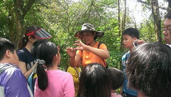 2014年11月1日四分尾山社區斑蝶、生態觀察與解說深根計畫