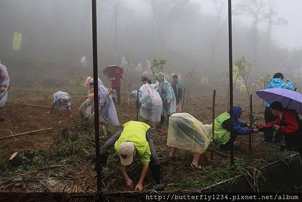 2016年3月19日四分尾山社區躍動山林計畫