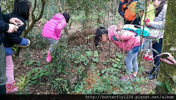 2016年3月20日四分尾山社區躍動山林計畫