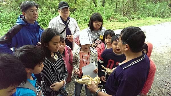20160416台灣淺山常見之野生動物_5875.jpg