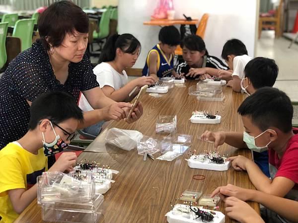 20200814 徐渙之老師 標本拔針保存、灌膠_200924_4.jpg
