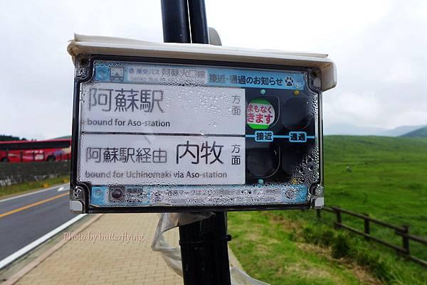 P1080084_副本.jpg