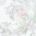 200710531037671_2.jpg