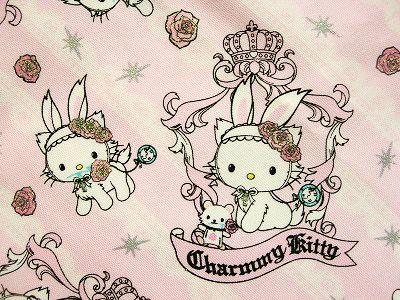 Kitty(玫瑰篇)近照