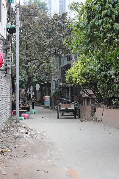 20130113-17廣州 (43)