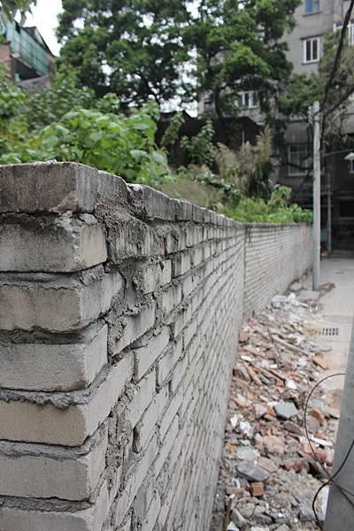 20130113-17廣州 (42)