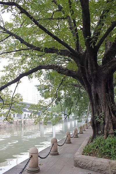 20130113-17廣州 (108)