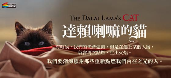 dalai_cat-560.jpg