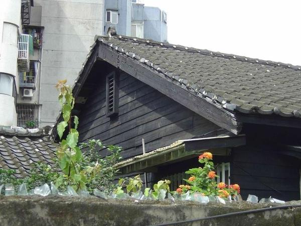 台大潮州街宿舍附近