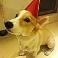 生日快樂!d(^_^)b