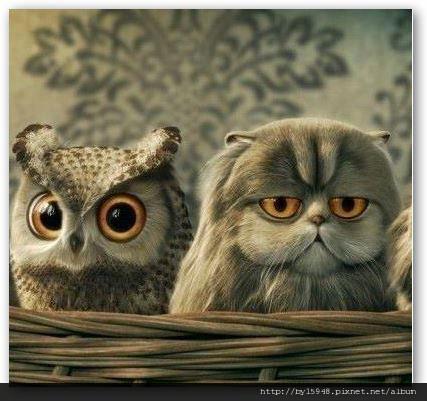 2012-07-30 20'19 五月天 阿信:各位夜貓,你們也跟我一樣,有這種毛病嗎?:左邊:入睡前(亮)右邊:起床後(累)