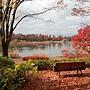 國立昭和公園.JPG