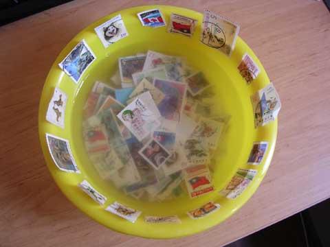 泡在水裡的郵票.jpg