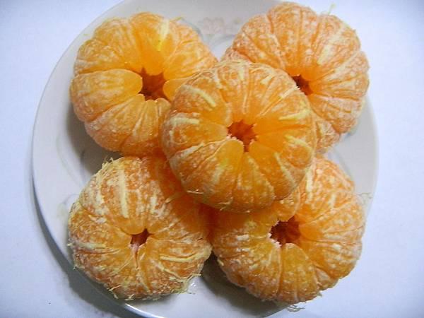 砂糖橘03