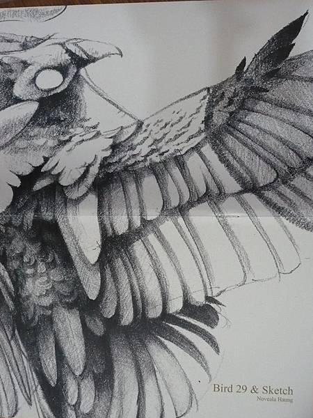 Bird29&Sketch