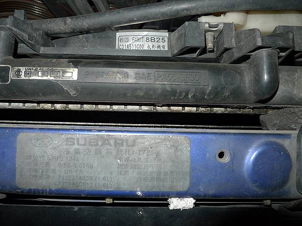 P1240483.JPG