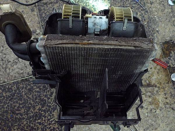 P1240982.JPG