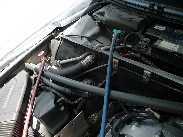 P1260792.JPG