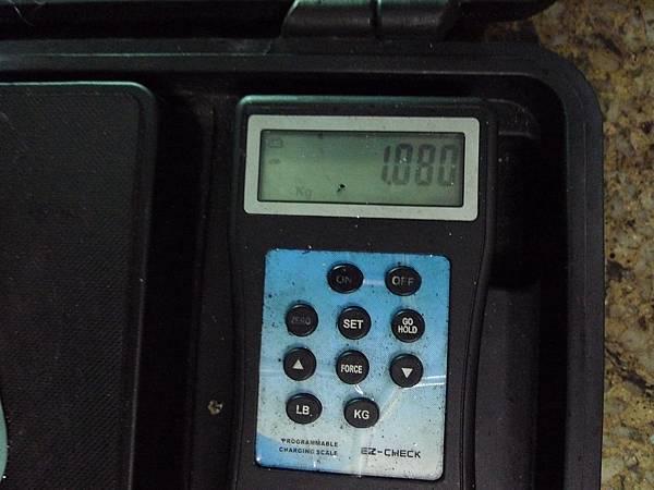 P1330113.JPG