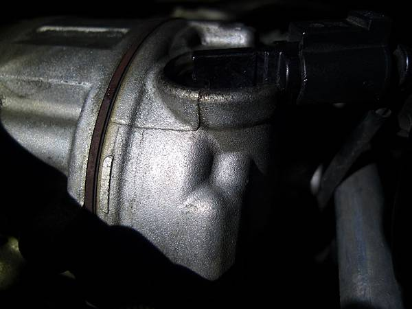 P1340293.JPG