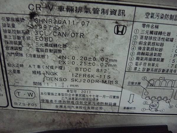 P1340749.JPG