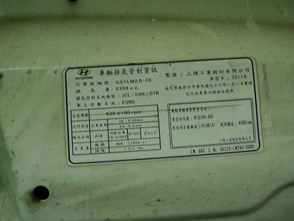 P1350233.JPG